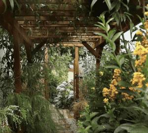 Garden Walkway Pergola
