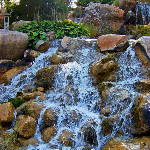 Create A Pond