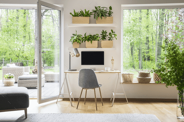 Creating a Dedicated Office Space in Your Own Backyard