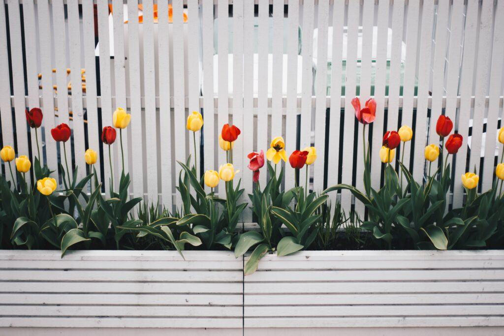 Residential Fencing Tips For Privacy and Safety